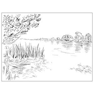 River Bank Coloring Page | free printable coloring pages for girls