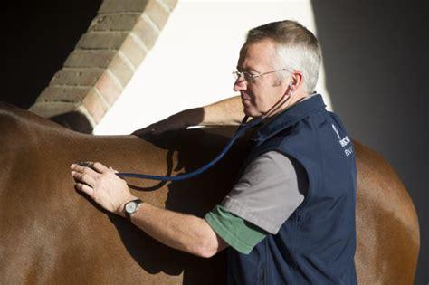 tom hughes liphook hospital liphook equine hospital