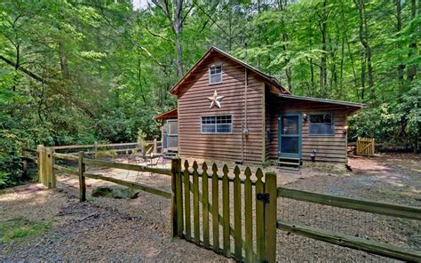 blue ridge mountains waterside pet friendly cabin with