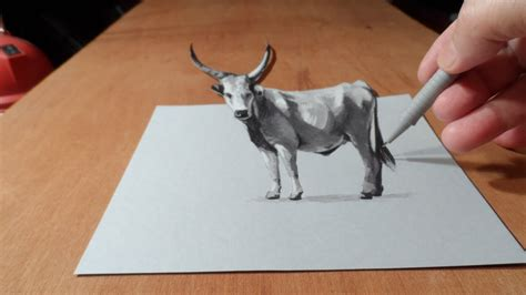 draw  grey cattle art drawing youtube