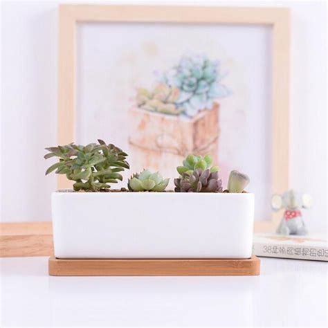 Home Decor Pots Home Decor Succulents Pots White Minimalist Ceramic Pots With Bamboo Tray Rectangular Bonsai Pot