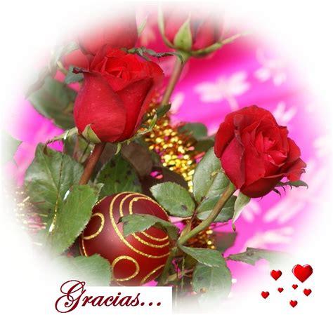 imagenes flores gracias gracias y rosas mandarsaludos com