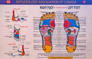 foot mapping canada 31 printable foot reflexology charts maps template lab