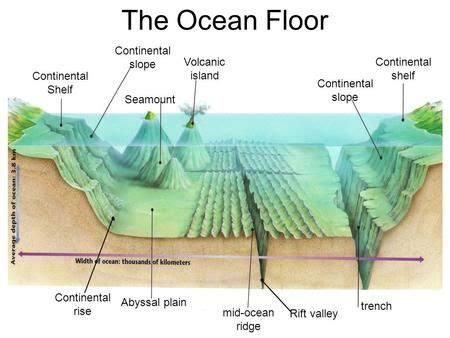 Sea Continental Shelf Summary by 25 Best Ideas About Continental Shelf On Loft
