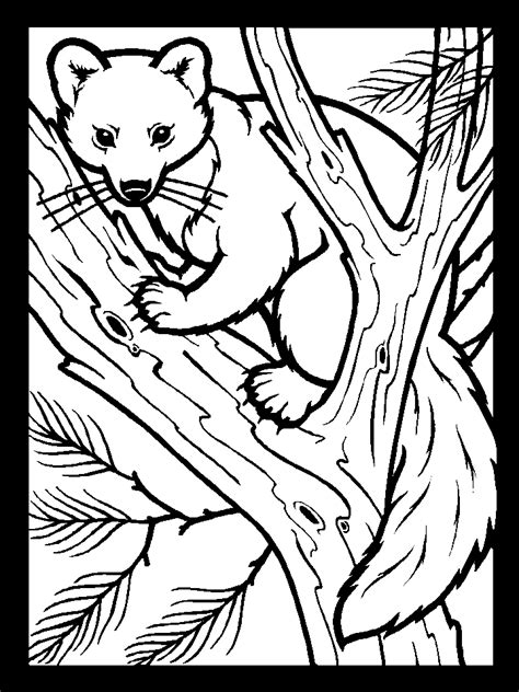 free coloring pages of animal homes