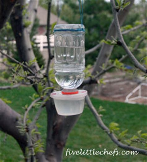 homemade hummingbird feeder allfreekidscrafts com