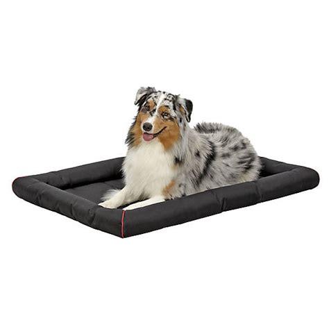 petsmart kong bed kong 174 durable crate pad pet bed dog mat crate covers