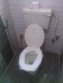 toilet paper on public toilet seat public toilet eanswers