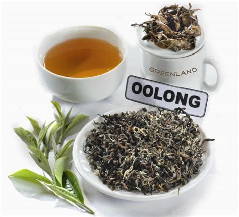 Teh Oolong 13 amazing health benefits of oolong tea