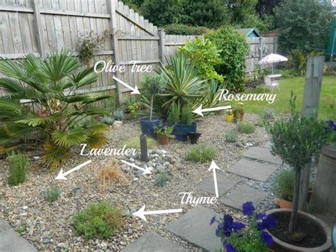 Plante Pour Jardin Sec by Quelles Plantes Pour Jardin Sec Id 233 Es Et Conseils Utiles