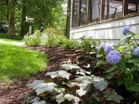 backyard ecosystem backyard ecosystem 28 images backyard ponds are truly