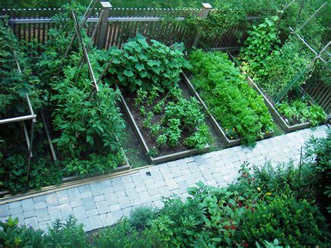 skippys vegetable garden skippy s vegetable garden july 2006