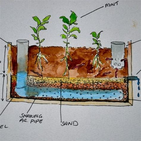 wicking garden bed pin by fabien gordon on permaculture pinterest