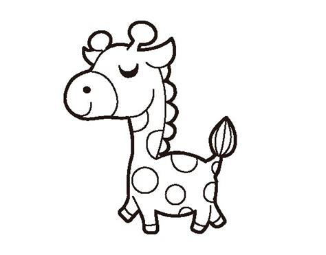 la giraffa vanitosa la giraffa vanitosa disegni da colorare timazighin