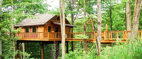 best treehouses the best tree house ever youtube within the best tree