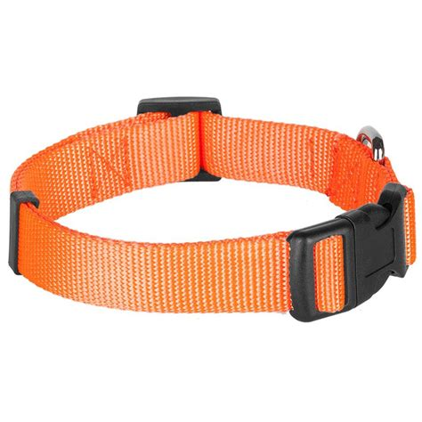 collar for dogs 25 blueberry pet classic solid color collar in florence orange neck