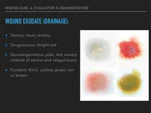 what color is serous drainage wound care
