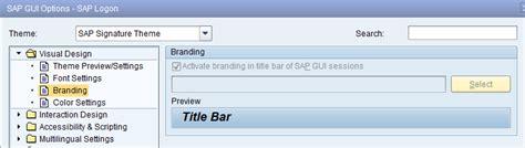 tutorial sap logon 730 sap gui 730 changing branding text sap netweaver