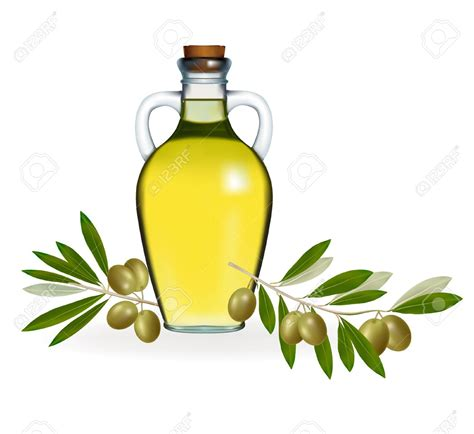 olive clipart olive oil clipart cartoon pencil and in color olive oil
