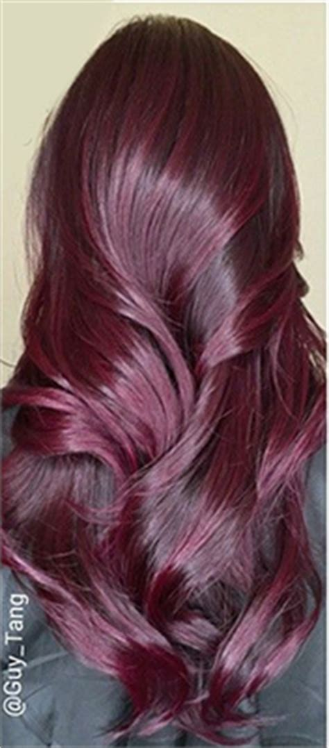2015 hair colour for hair 2015 hair color trends guide simply organic beauty