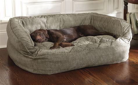 Best Platform Beds Guide dog bed with bolster lounger deep dish dog bed orvis uk