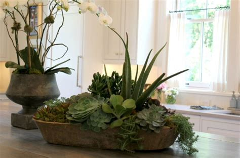 pin  darcy lakevold  stuff dining room centerpiece succulent bowls succulent centerpieces