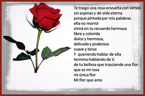 Imagenes Rosas Con Poemas | las mas hermosas fotos de rosas con poemas de amor