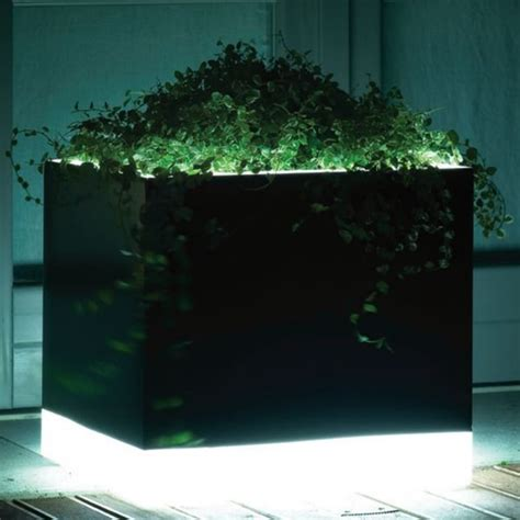 Illuminated Garden Planters by Illuminated Outdoor Planter In Black And White Modern