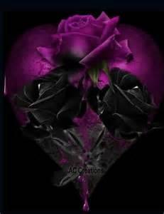 black n purple roses flowers pinterest
