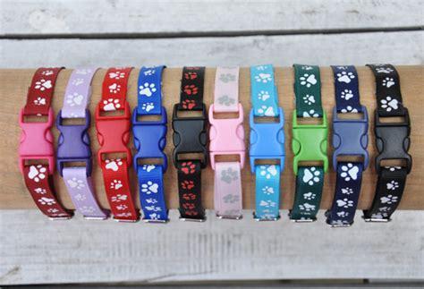 puppy litter collars items similar to puppy collar litter id collar bands newborn whelping identification