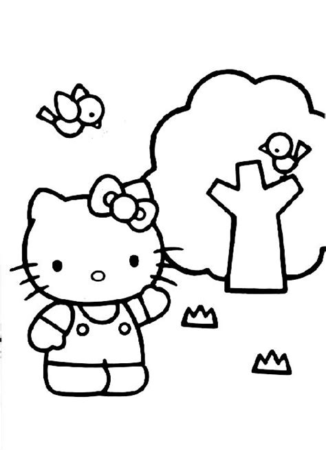 hello kitty soccer coloring pages best 25 hello kitty pictures ideas on pinterest hello