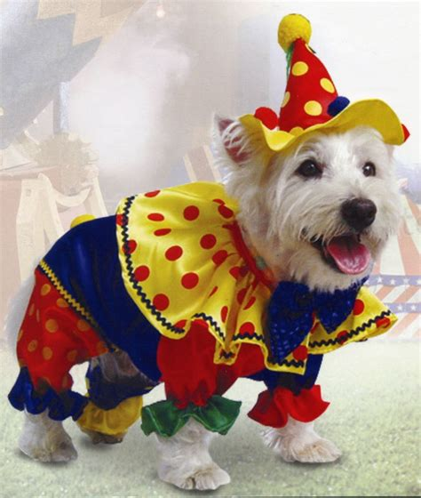clown costume for dogs colourful clown costume great fancy dress for dogs sizes 10 quot 22 quot