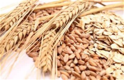 whole grains diabetes prevention wheat
