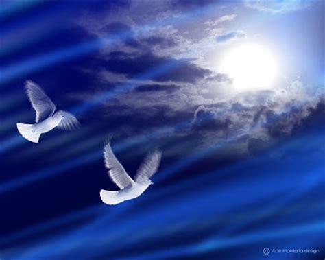 imagenes de luto con palomas hacia los limites del tiempo palomas del sentimiento