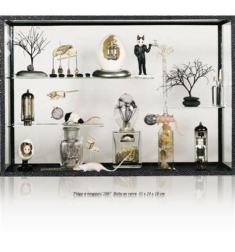 Le Cabinet De Curiosité by Curiosity Cabinets A Come Back Great