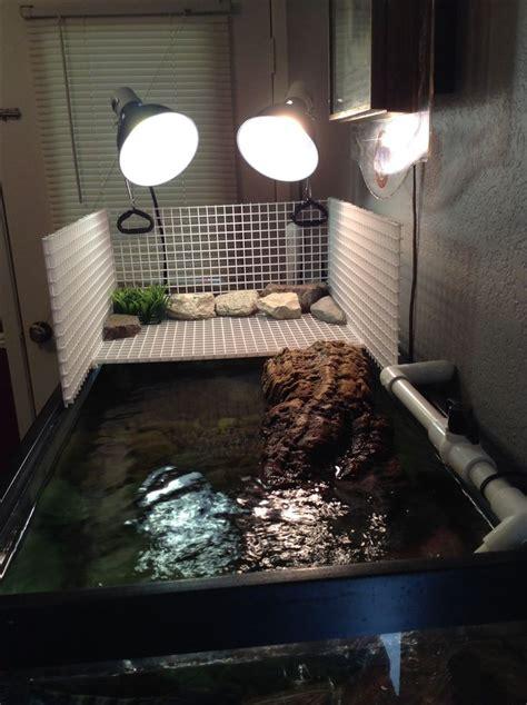 aquatic turtle basking light 1000 ideas about turtle habitat on tortoise