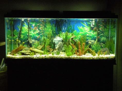Led Aquascape how to sell a fish tank ebay