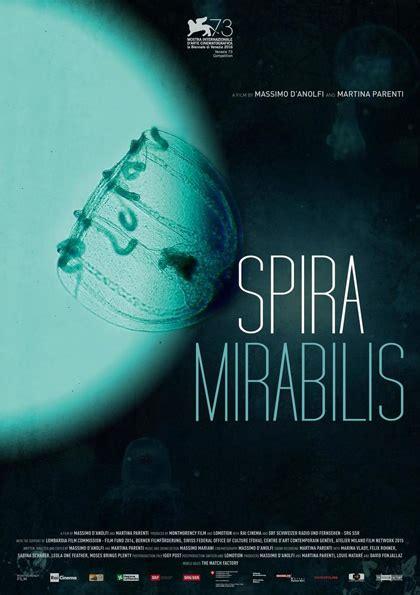 Spira Mirabilis spira mirabilis 2016