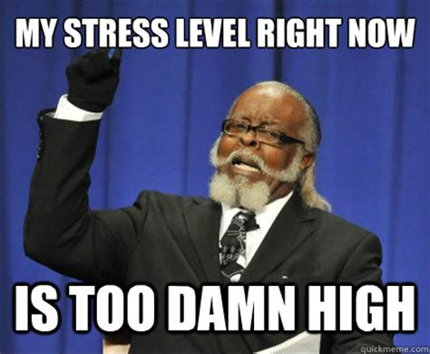 Stress Meme - my stress level right now is too damn high too damn high