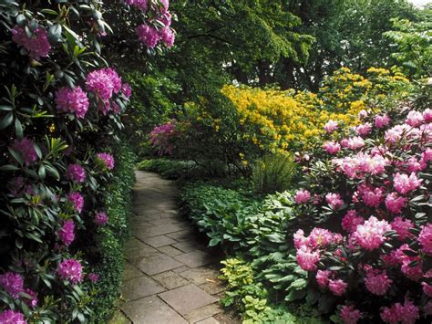 beautiful flower garden and lawn ideas flowers wallpaper ver a beleza caminhos com flores