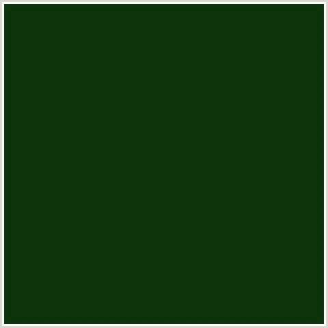 Deep Forest Green 0d3309 hex color rgb 13 51 9 deep forest green green