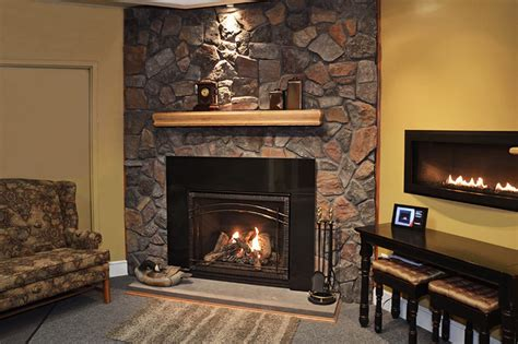 fire 40 gas fireplace by napoleon traditional