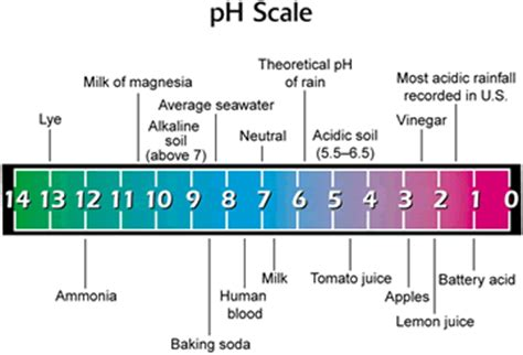 Landscape Scale Definition Pin Ph Scale Definition Image Search Results On