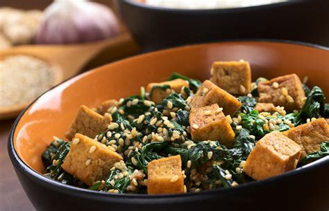 food with probiotics 9 all sources of healthy probiotics