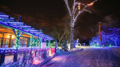 Zoolights Returns To Calgary Zoo For 2016 Holiday Season Zoo Lights Calgary