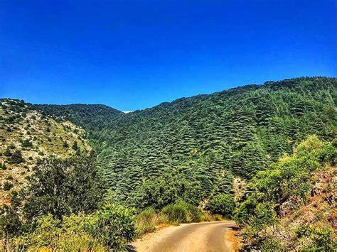 Lebanon Landscape Pictures Landscape Landscapephotography Naturephotography Cedars