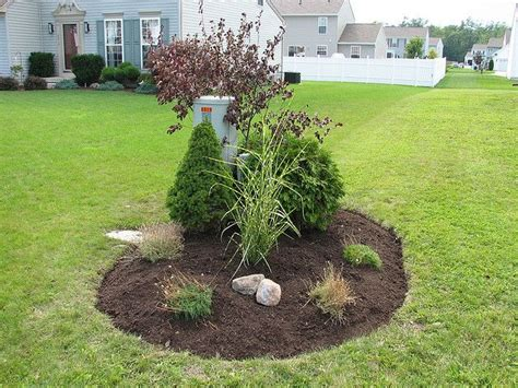 Landscape Ideas To Hide Electrical Box Horticulture And Boxes On