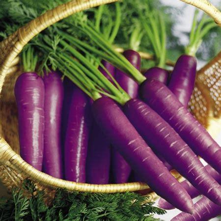 purple carrots wiki health benefits sweet additions