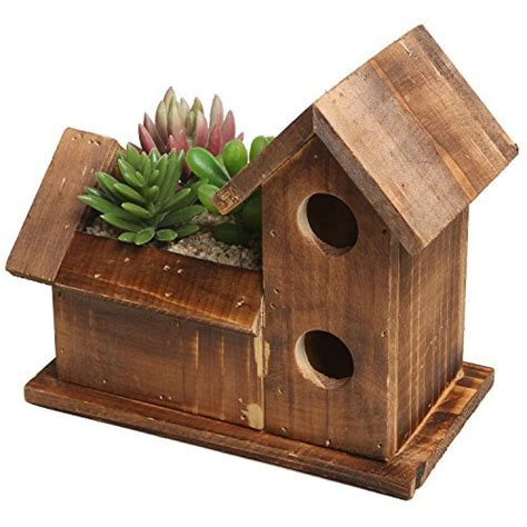 small rustic style bird house design brown succulent