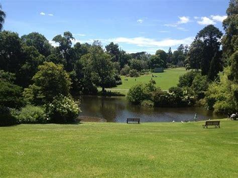 Melbourne Botanic Gardens Botanic Gardens The Lake Picture Of Royal Botanic Gardens Melbourne Melbourne Tripadvisor